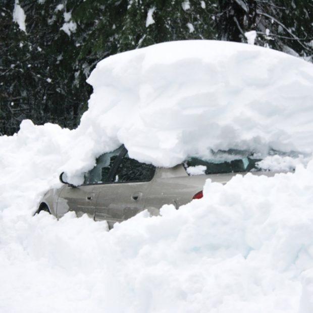 Mt Shasta City Storm 2010